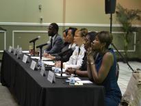 2017 Spring Public Meeting Panel